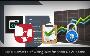 Top 5 Benefits of Using DotNet for Web Developers